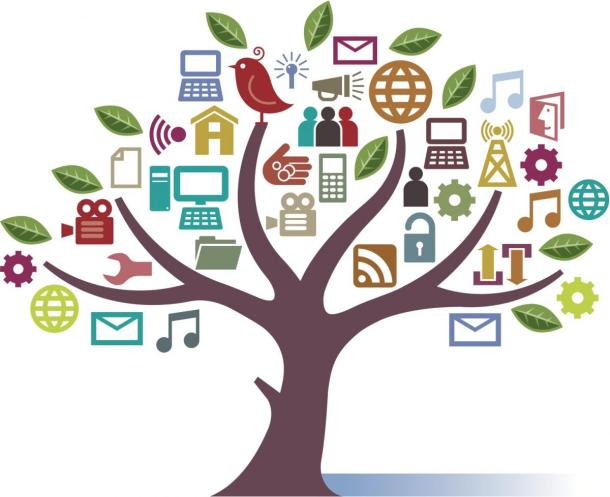 árvore educom