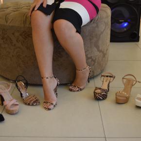 Coquetel Gato&Sapato